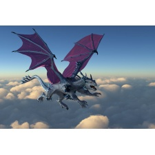 Fototapeta dragon 3033